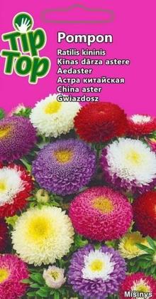 Asteres Pildītās JAUKTĀS  TIP TOP