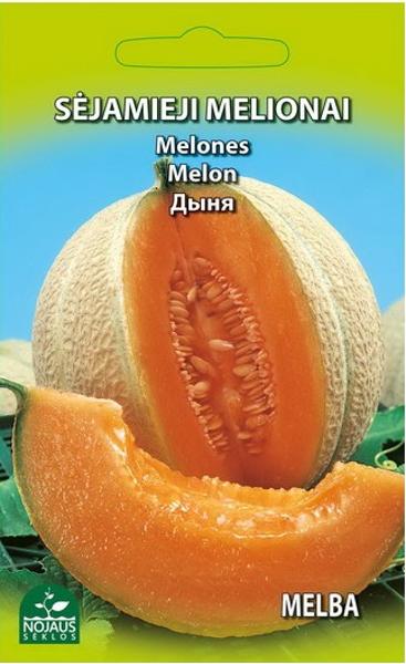 Melone Ananasa