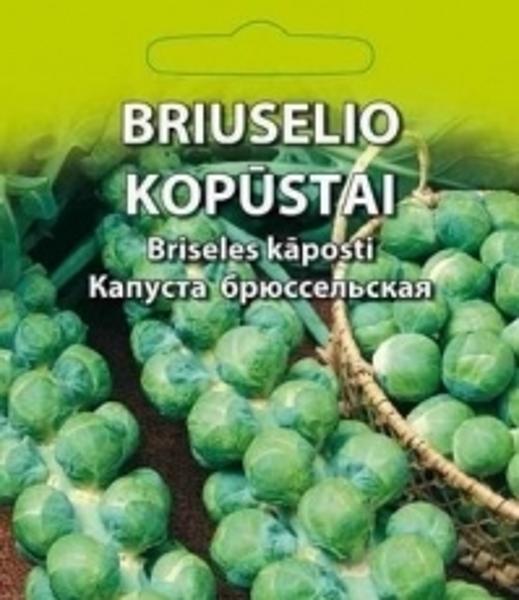 Briseles kāposti