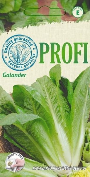 Salāti Galander