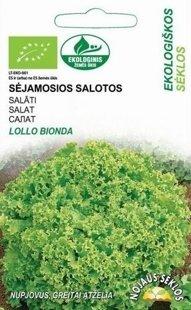Salāti  Lollo Bionda )