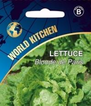 Salāti  GALVIŅU  BLENDA DE PARIS Var audzēt visu gadu